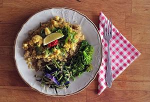 Obrázek - Květákové Curry s Červenou Čočkou